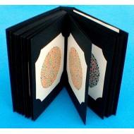 Ishihara Colour Vision Book 38 plate