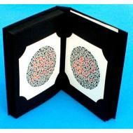 Ishihara Colour Vision Book 10 plate